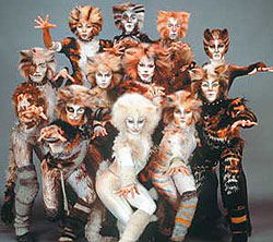 MEOW... CATS IS AUDITIONING